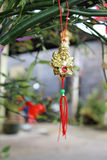 Adornment for chinese lunar new year Royalty Free Stock Images