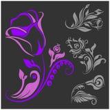 Adorno de Rose - vector de los elementos del diseño floral Imágenes de archivo libres de regalías