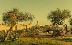 Adornos bíblicos con las colinas santas de Jerusalén, Israel Foto de archivo libre de regalías
