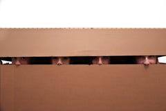 Ados cachés dans la boîte mobile photographie stock