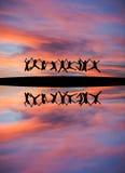 Ados silhouettés tenant des mains et sautant en ciel de coucher du soleil Photos stock