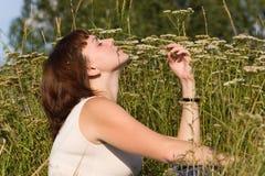 Adoucissez une lame d'herbe Image libre de droits
