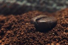 Adra fragrant kawowy makro- zbliżenie Obrazy Royalty Free