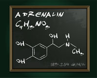 Adrenalin molecule image. Vector illustration in white color handwritten on dark grey background. Chemistry, biology, medicine and healthcare concept with Royalty Free Stock Photo