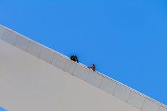 Adrenaline Bunjee-Pullover-Schritte Lizenzfreie Stockfotografie