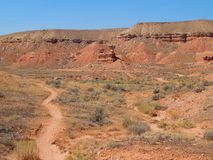 Adrenaline-Eile von der Mountainbike-Spur in frühlingshaftem, Utah Stockbilder