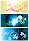 Adreskaartjes die in elegante stijl worden geplaatst Royalty-vrije Stock Afbeelding