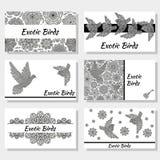 Adreskaartjes met creatieve decoratieve vogels en bloemen Zwart-witte kleuren Royalty-vrije Stock Fotografie