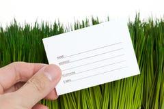 Adressbuch und grünes Gras Stockfotografie