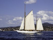 Adria. Classic sailing yacht Adria setting sails before the regatta Royalty Free Stock Photography