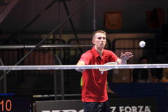Adrian Dziolko - Badminton Stockbilder