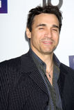 Adrian Paul Royalty Free Stock Photos