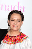 Adriana Barraza Royalty Free Stock Image