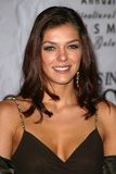 Adrianne Curry Stock Image