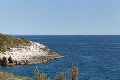 The Adriatic coast in Istria. The Adriatic coast at cape Kamenjak in Istria, Croatia royalty free stock photography