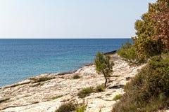 The Adriatic coast in Istria. The Adriatic coast at cape Kamenjak in Istria, Croatia stock image