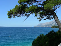 Adriatic coastline. At Brela, Croatia (most beautiful beach of Europe at 2004 (by Forbes Royalty Free Stock Images