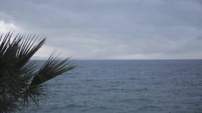 adriatic hav lager videofilmer