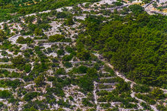Adriatic landscape - Island Losinj