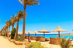 adriatic plaży morza Włochy widok Obrazy Royalty Free
