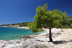 Adriatic Sea beach Stock Images