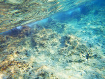 Adriatic sea bottom. Clean Transparent Blue sea bottom in Croatia royalty free stock photography