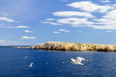 Adriatic sea, mountains and sky. Seagulls over water. Horizontal Stock Photo