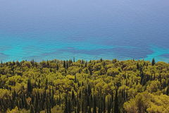 Adriatic sea with pine and cypress forest Royalty Free Stock Photos