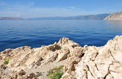 Adriatic sea, rocky coast Stock Image