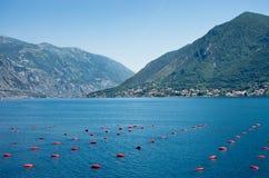 Adriatic sea shore Royalty Free Stock Photography