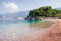 Adriatic seashore Stock Images