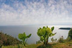 Adriatische Küste Montenegro Lizenzfreie Stockbilder