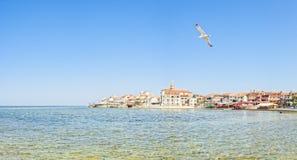 Adriatische Küste in Umag Kroatien Stockfoto