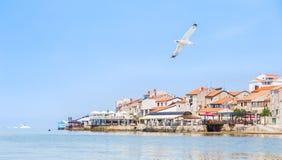 Adriatische Küste in Umag Kroatien Stockfotos