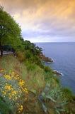 Adriatische Seeküste, Dubrovnik Stockbilder