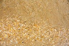 Adriatische Seeküstenansicht Küste von Italien, von sandigem Strand und von Welle, Sommerhintergrund Lizenzfreie Stockfotos