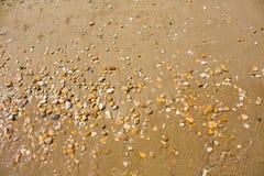 Adriatische Seeküstenansicht Küste von Italien, von sandigem Strand und von Welle, Sommerhintergrund Lizenzfreie Stockbilder