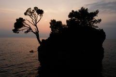 Adriatisches Costline Brela Lizenzfreies Stockbild