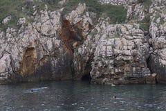 Adriatisches Meer der Felsen Lizenzfreies Stockbild
