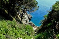 Adriatisches Meer, felsige Küste, saubere Himmellandschaft der Mittelmeerregion, Montenegro Stockfoto