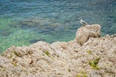 ADRIATISCHES MEER kroatien Stockfoto
