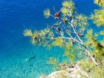 Adriatisches Meer, Makarska Riviera, Kroatien Lizenzfreies Stockfoto