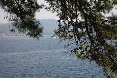 Adriatisches Meer, Schiff und Baum mit Kegeln Stockbild