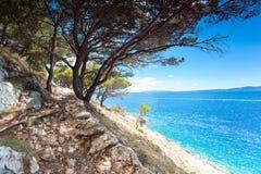 Adriatisches See- und Steinklippenberge mit Kiefern in Dalmatien Stockfotografie