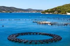 Adriatisches Seegeschäft Stockbild