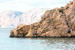 Adriatisches Seeküstenlinie in Kroatien Stockbild
