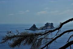 Adriatisches Seekleine Inseln, Kieferschattenbild, saubere Himmellandschaft der Mittelmeerregion, Montenegro Stockfotografie