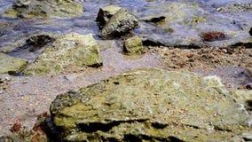 Adriatyckiego morza skały i powierzchnia zbiory wideo