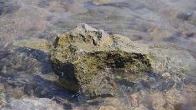 Adriatyckiego morza skały i powierzchnia zdjęcie wideo