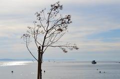 Adriatyckiego morza widok żaglówki Obraz Stock